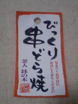 20100227_003
