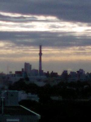 20101130