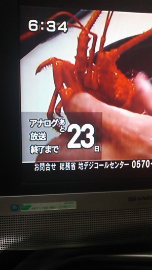 20110702_002