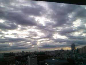 20111124_008